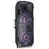 FT215LED Fenton powered speaker 1600W + accu + 2 dr. micro